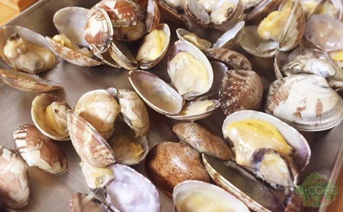 貝が開いている状態
