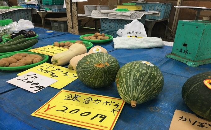 鎌倉野菜2